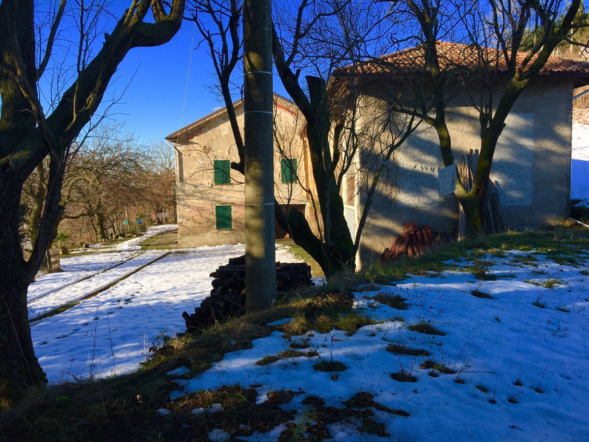 Property: Real Estate in Montabone. Image 2